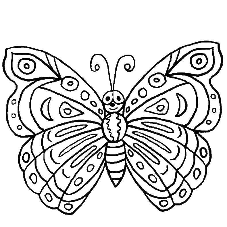 Раскраска бабочки Скачать ,Парк Юрского периода,.  Распечатать
