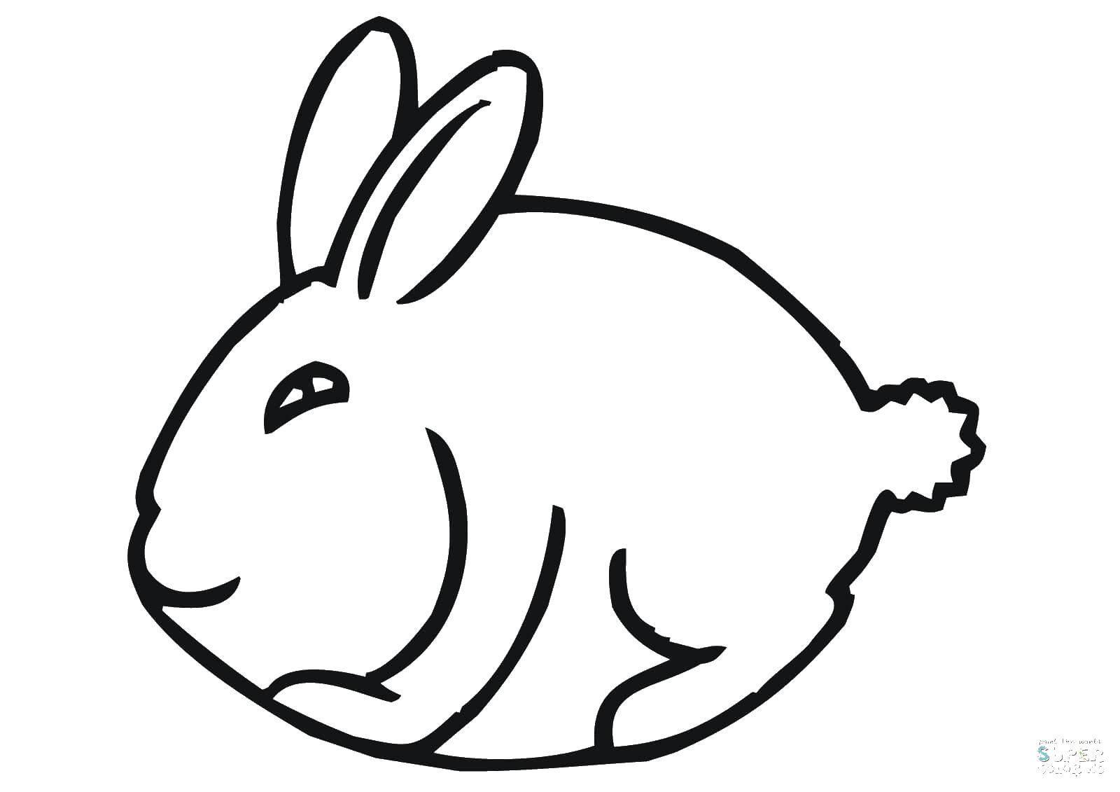 Раскраска кролик Скачать пони.  Распечатать ,мой маленький пони,