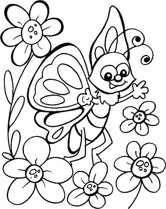 Раскраска бабочки Скачать ,Ягоды,.  Распечатать
