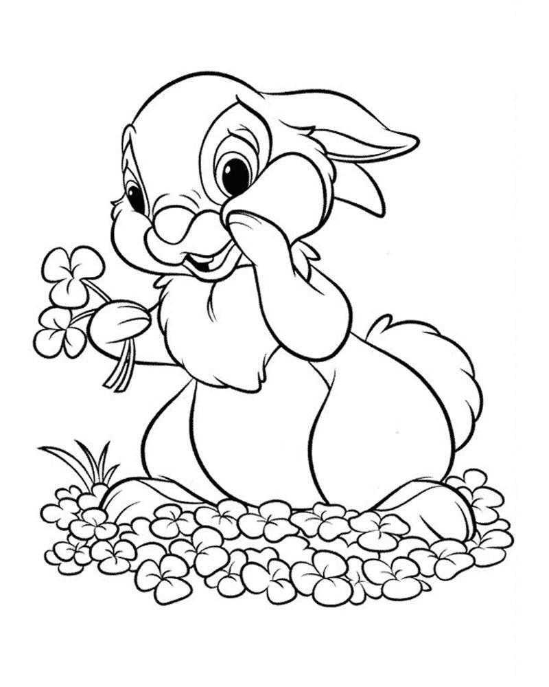 Раскраска Заяц собирает цветы Скачать заяц, цветы.  Распечатать ,Животные,