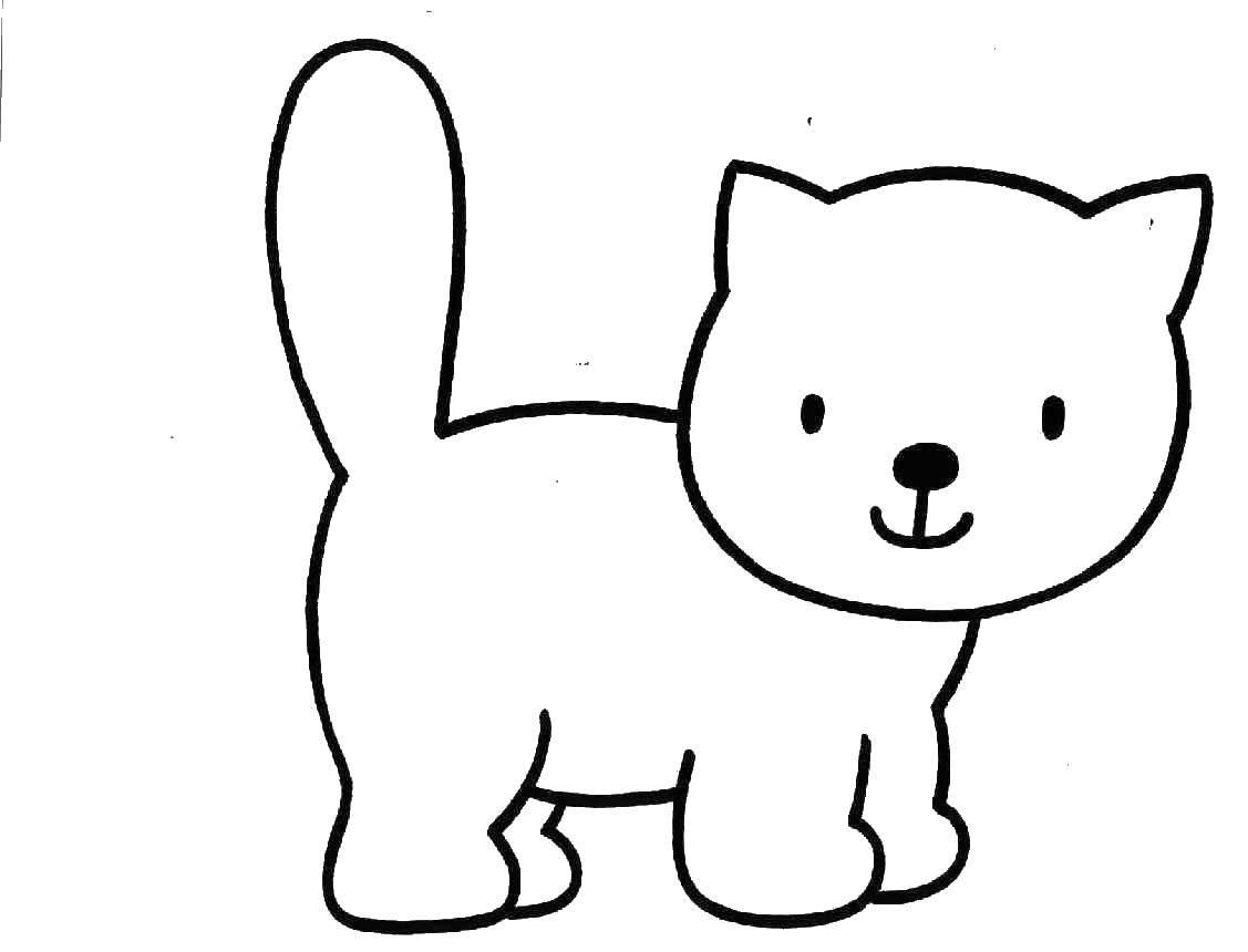 Раскраска Кошка Скачать ,Поиск предметов,.  Распечатать