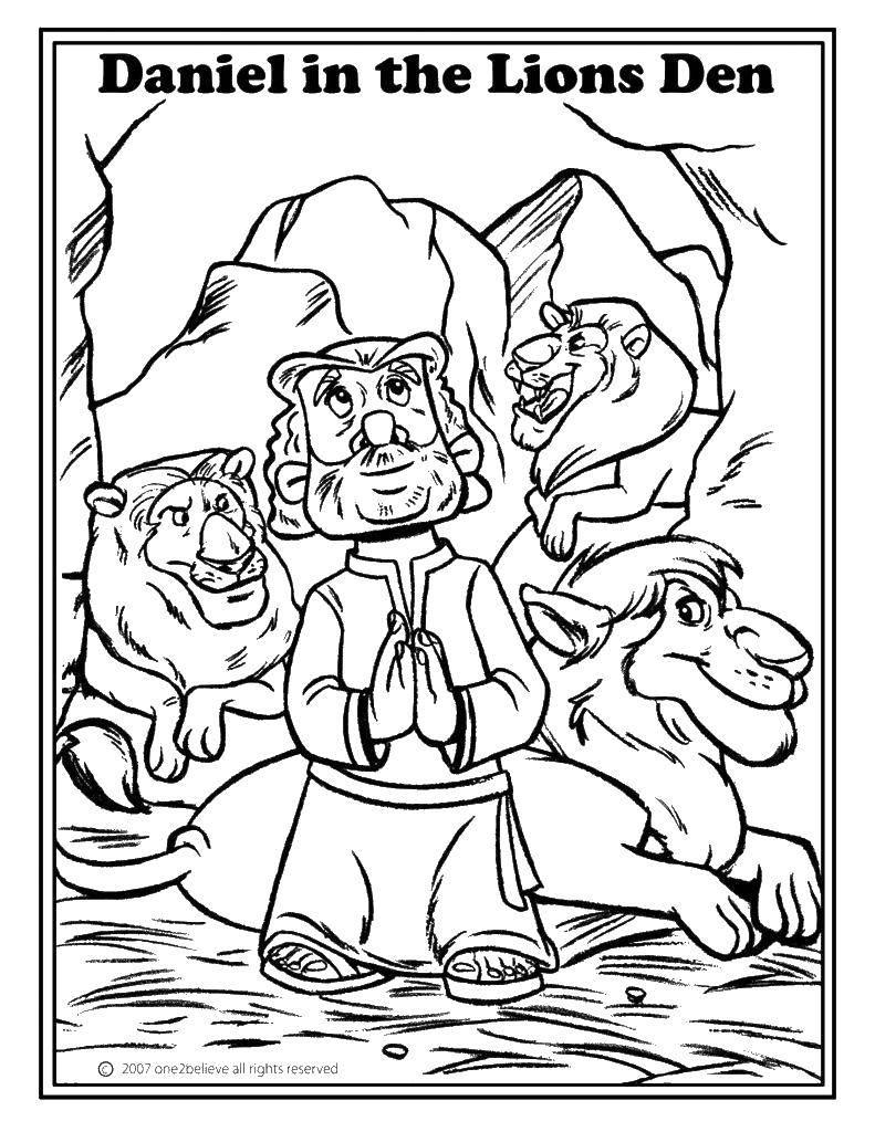 Раскраска библия Скачать летучая мышка, Stormie Batters..  Распечатать ,мой маленький зоомагазин,