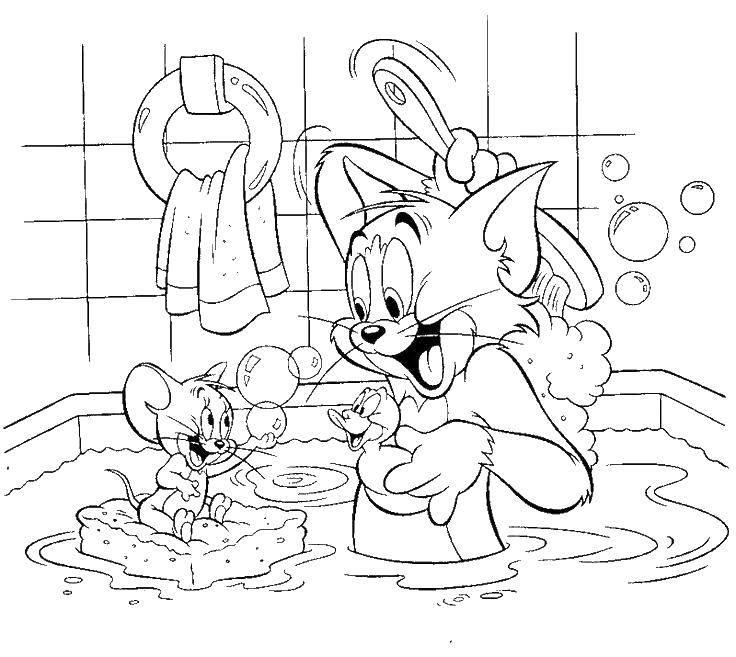 Раскраска Ванная комната Скачать эльфы, .  Распечатать ,феи,