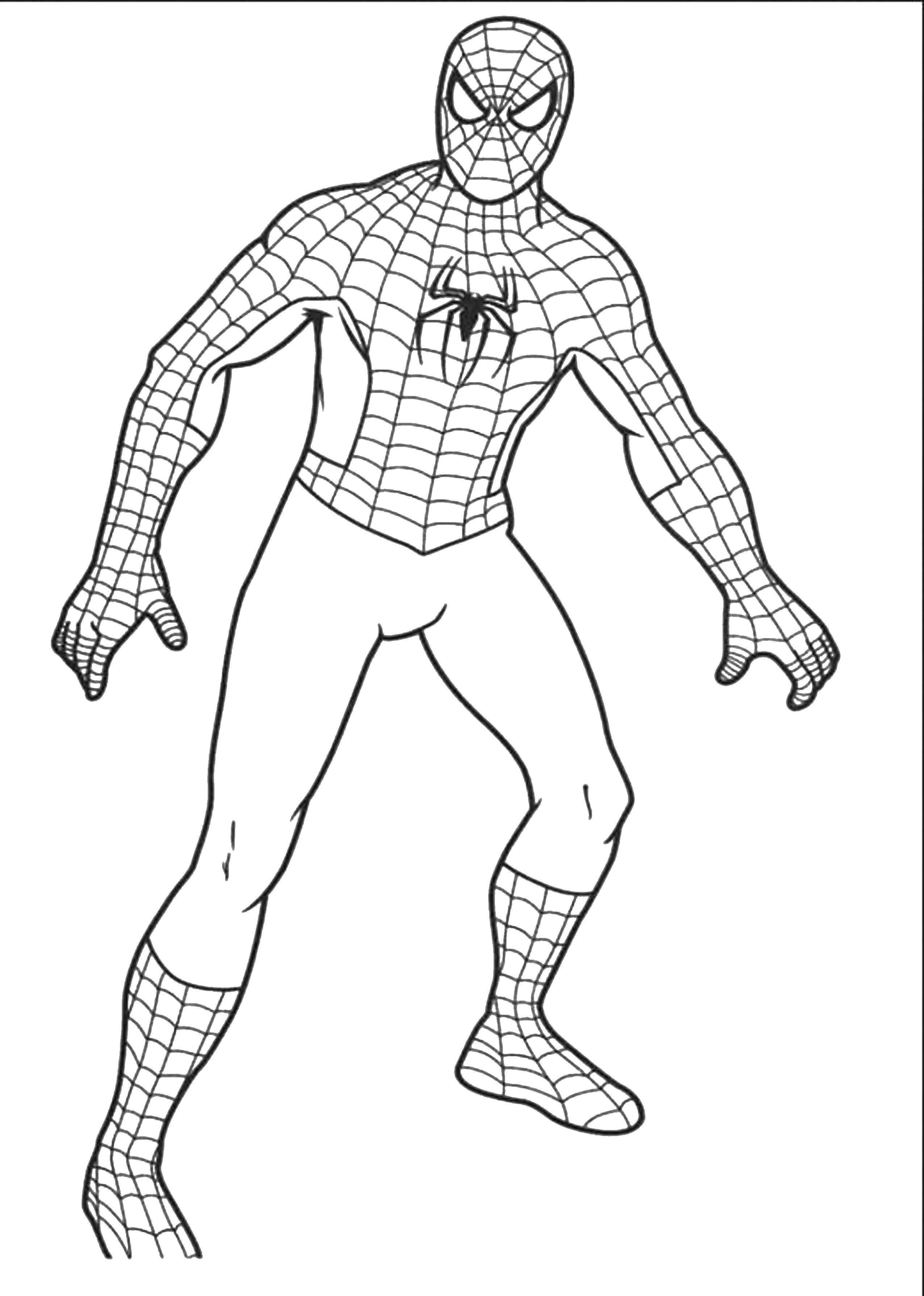 Раскраска Человек паук Скачать человек паук, спайдермен, фильм, мультфильм.  Распечатать ,человек паук,