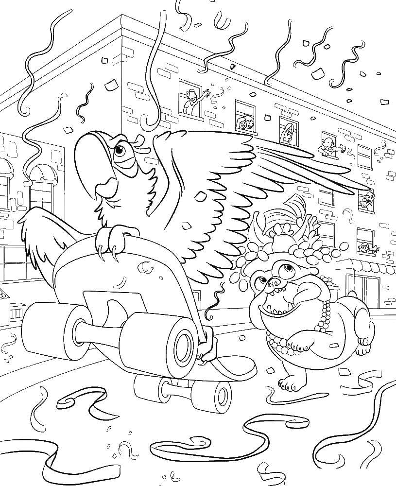 Раскраска Голубчик на скейтборде Скачать ,Рио, Линда, Тулио, Голубчик, Жемчужинка,.  Распечатать