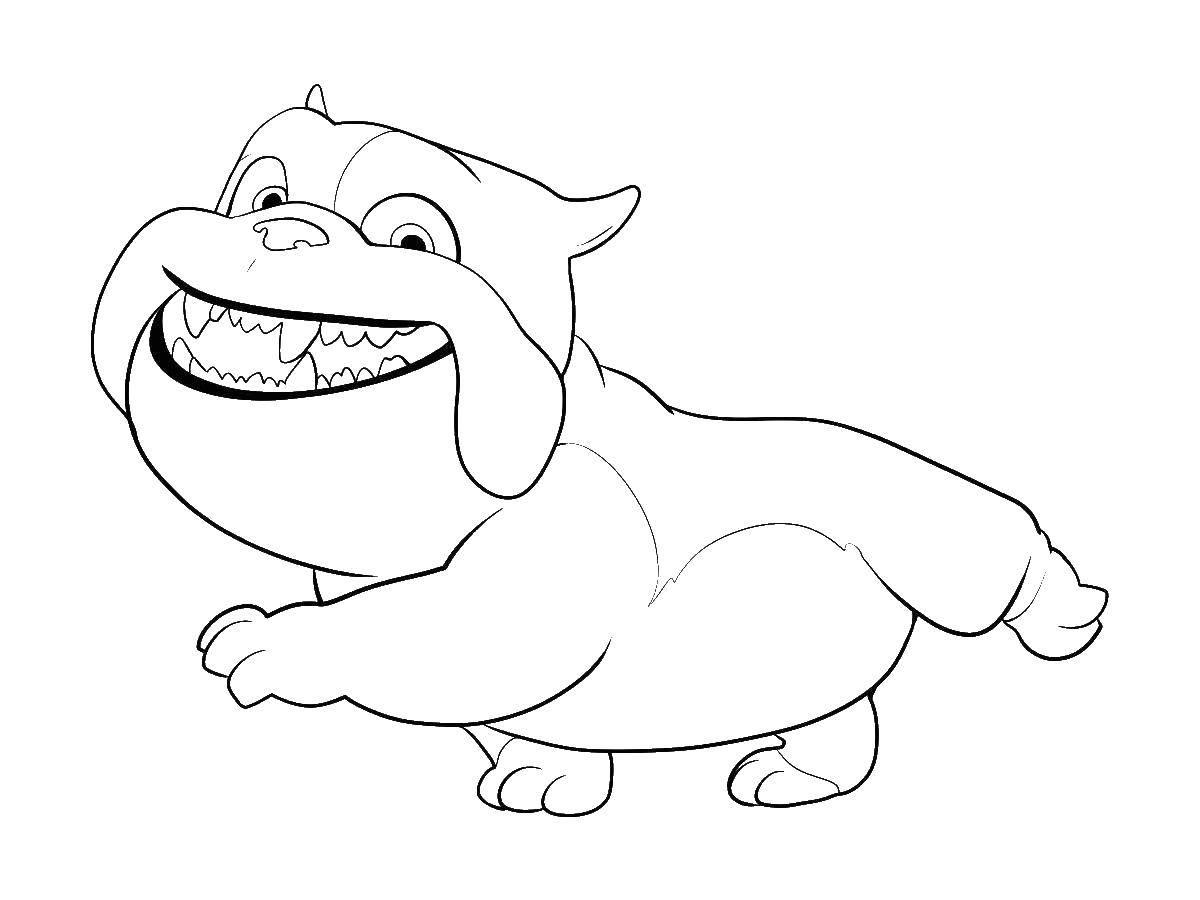 Раскраска Луис английский бульдог Скачать ,Луис, английский бульдог, собака,.  Распечатать