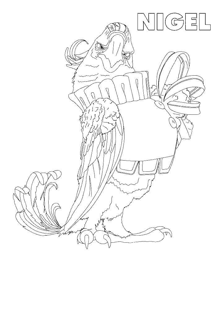 Раскраска Найджел большой хохлатый какаду Скачать ,Рио, Найджел,хохлатый какаду,.  Распечатать