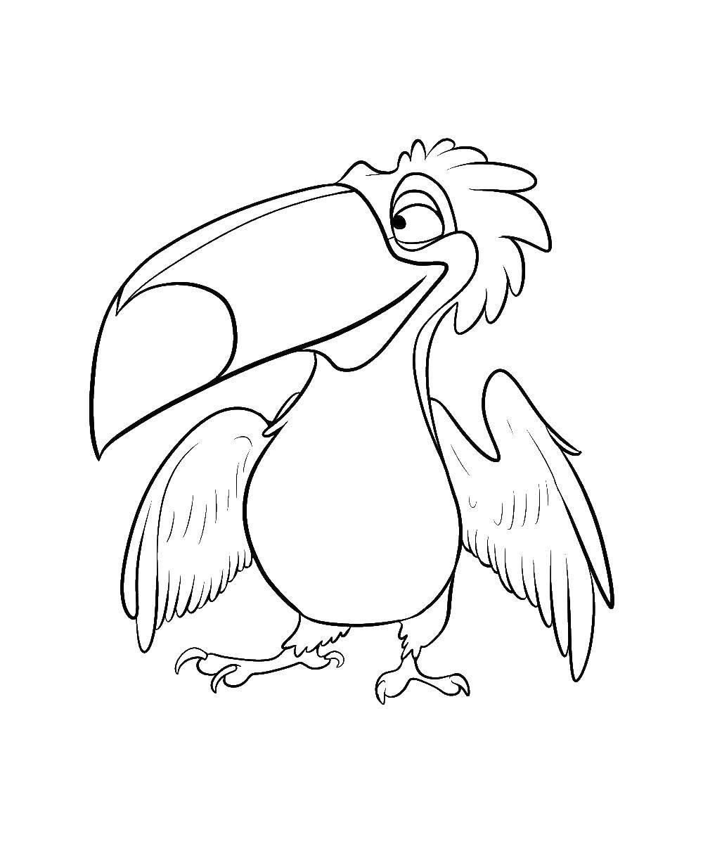 Раскраска Педро краснохохлатая кардиналовая овсянка Скачать Педро, Рои, попугай.  Распечатать ,рио,