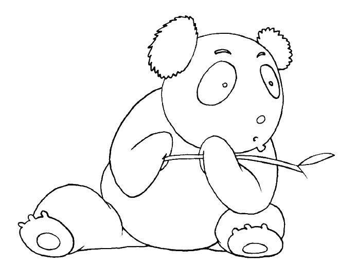 Раскраска дикие животные Скачать ,101 далматинец, Дисней, мультфильм,.  Распечатать