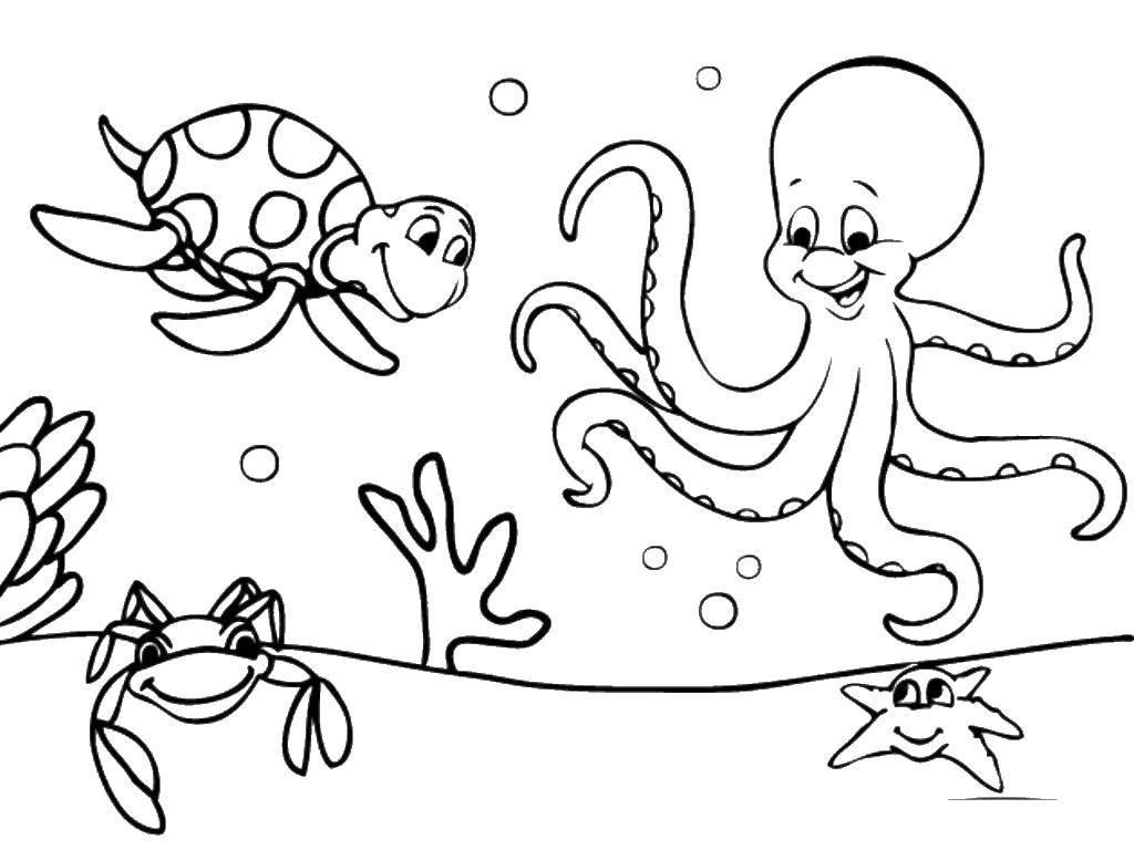 Раскраска Океан Скачать кошки, кошечки, животные.  Распечатать ,котики,