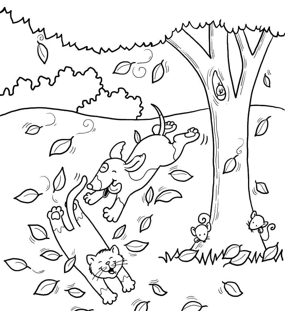 Раскраска Животные играют под деревом Скачать дерево, животные.  Распечатать ,дерево,