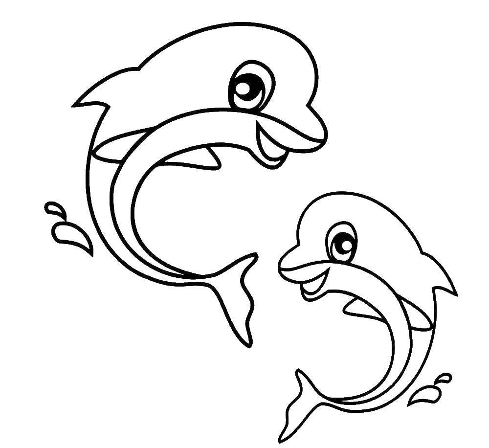 Раскраска Пара веселых дельфинов Скачать животные, дельфины.  Распечатать ,Животные,