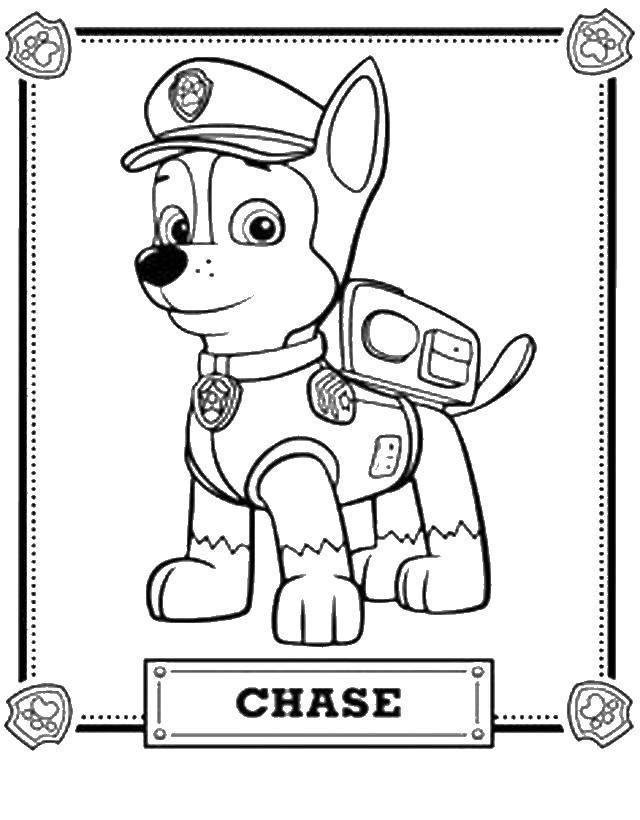 Раскраска щенячий патруль Скачать супермарио, принцесса.  Распечатать ,Персонаж из игры,