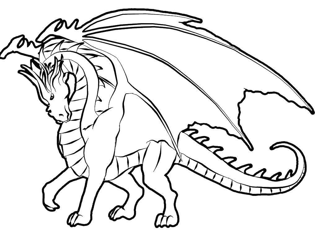 Раскраска Дракон с большими крыльями Скачать Драконы.  Распечатать ,Драконы,