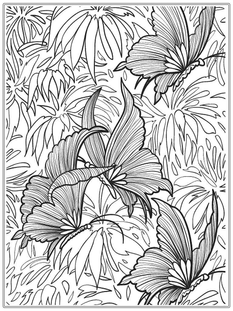 Раскраска Тропические цветы Скачать Цветы.  Распечатать ,цветы,