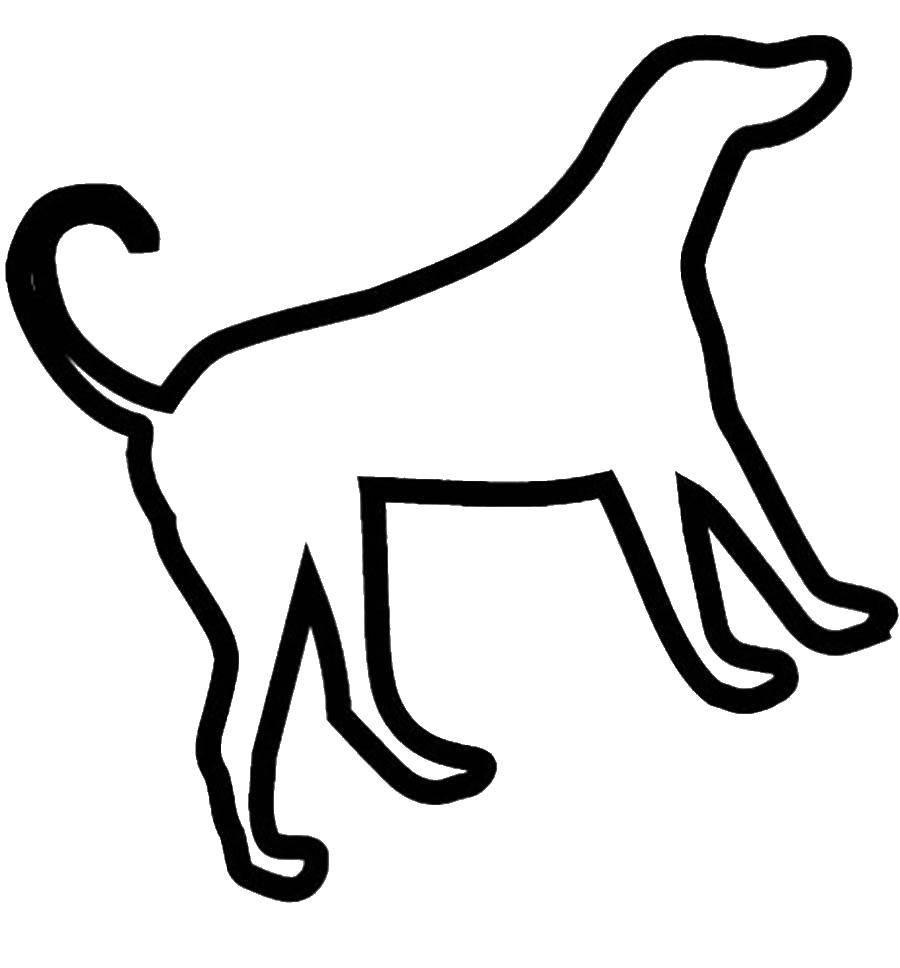 Раскраска собаки Скачать транспорт.  Распечатать ,Транспорт на английском,