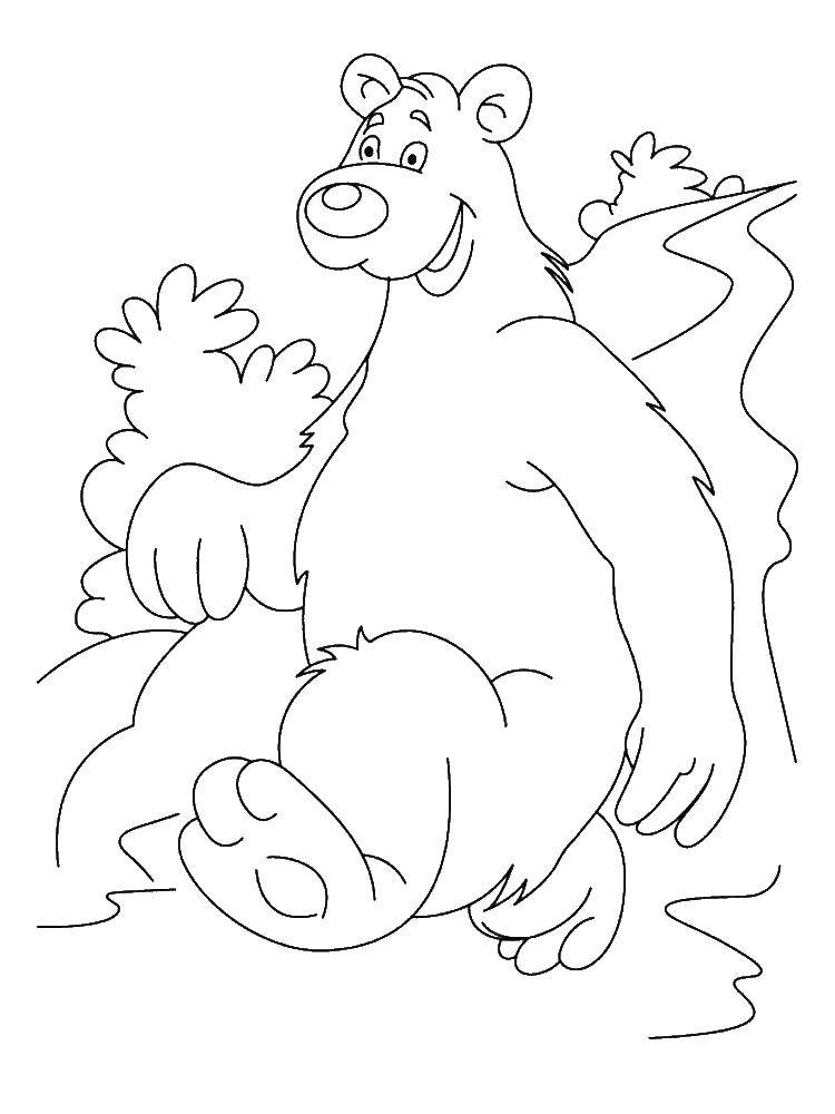 Раскраска Мишутка. Скачать Животные, медведь.  Распечатать ,Животные,