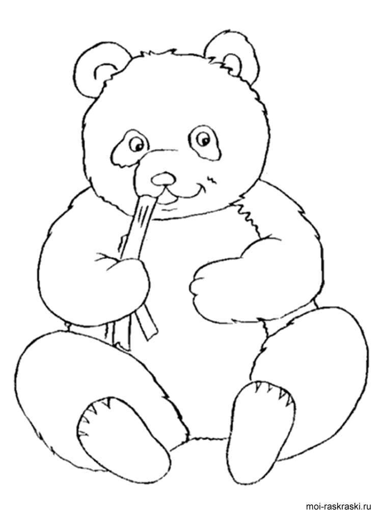 Раскраска Панда с бамбуком Скачать Животные, медведь.  Распечатать ,Животные,