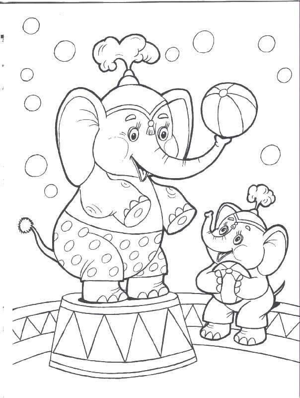 Раскраска Слоны в цирке Скачать цирк.  Распечатать ,цирк,