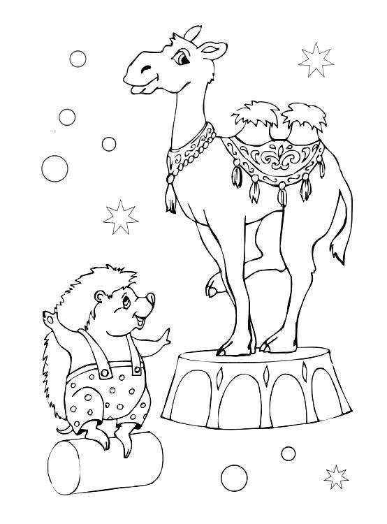 Раскраска Ёжик с верблюдом Скачать ,цирк,.  Распечатать