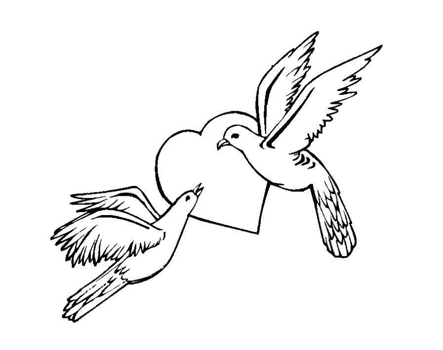 Раскраска Голуби и сердце Скачать голуби мира, сердечки, птицы, голуби.  Распечатать ,голубь мира,