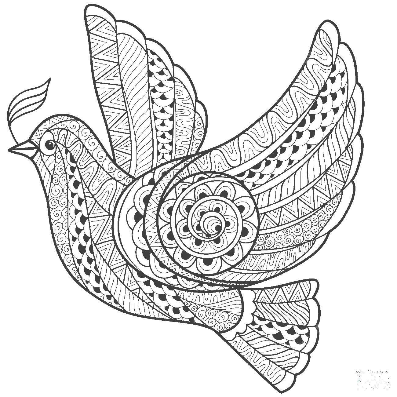 Раскраска Узорный голубь Скачать Узоры, геометрические.  Распечатать ,голубь мира,