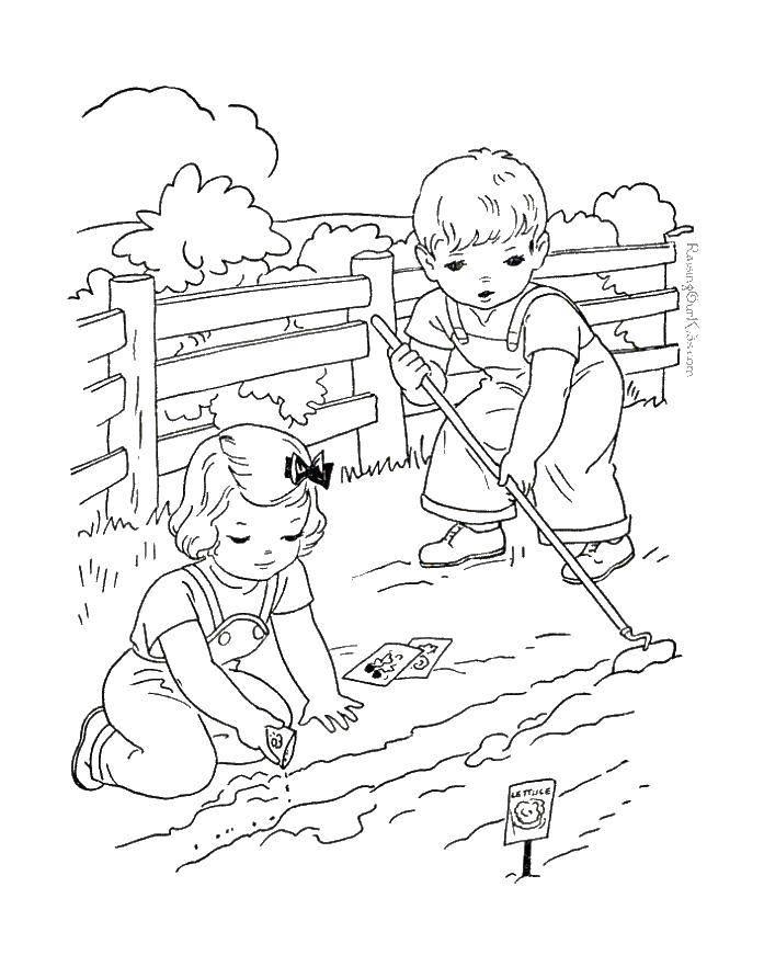 Раскраска Сажаем капусту Скачать Лейка, сад.  Распечатать ,лейка,