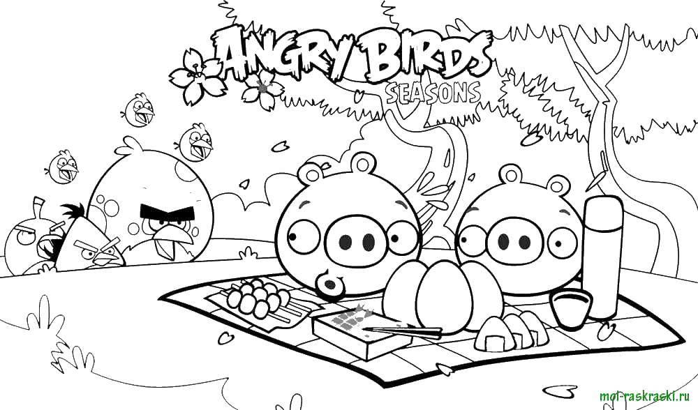 Раскраска Angry birds, игра, пикник Скачать Angry Birds, персонаж из игры.  Распечатать ,Персонаж из игры,