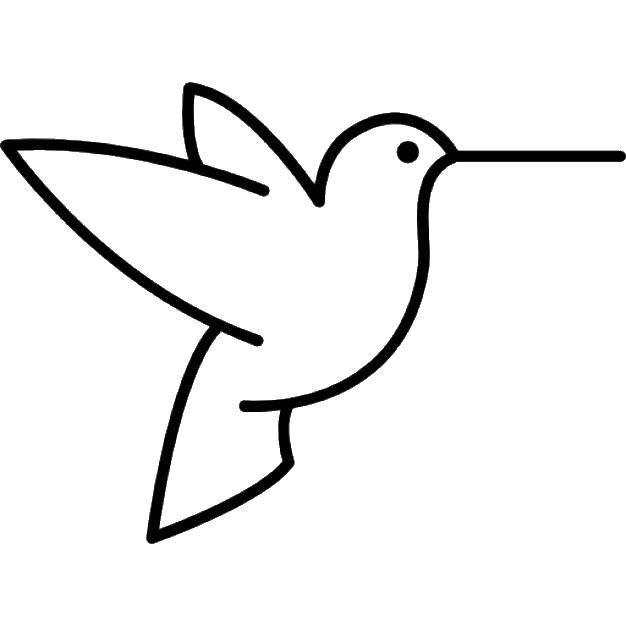 Раскраска Контуры для вырезания птиц Скачать ,катара, струны, узоры,.  Распечатать