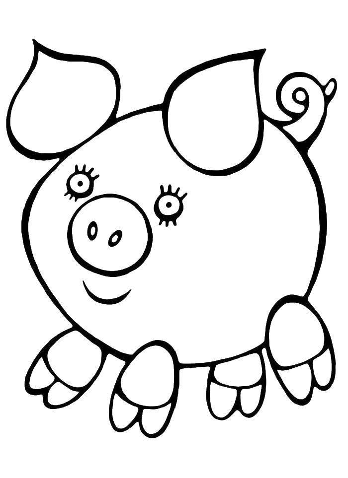 Раскраска Смешная хрюша Скачать Животные, свинка.  Распечатать ,домашние животные,
