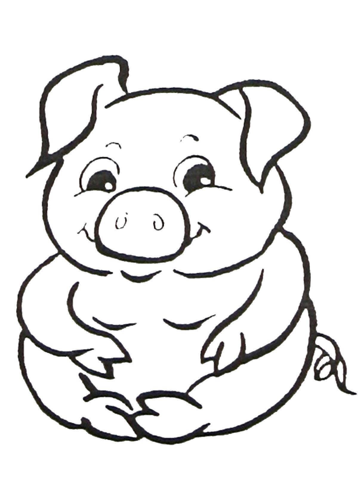 Название: Раскраска Толстый поросенок. Категория: домашние животные. Теги: Животные, свинка.