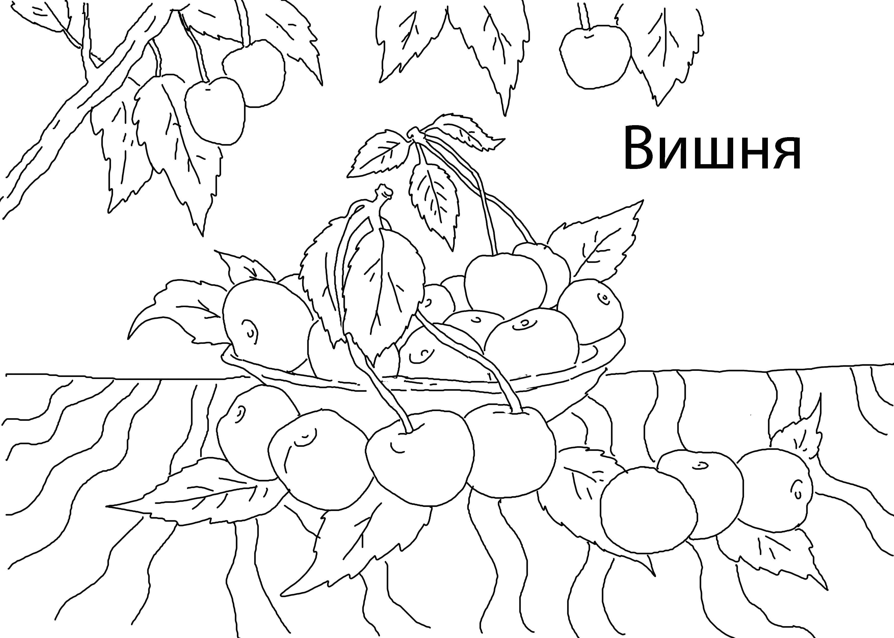 Раскраска Вкусная вишня Скачать Ягоды, вишня.  Распечатать ,ягоды,