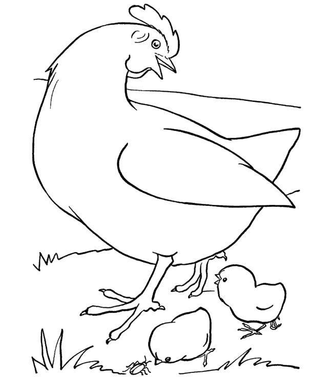 Раскраски маленький, Раскраска Единорог с крыльями и ...