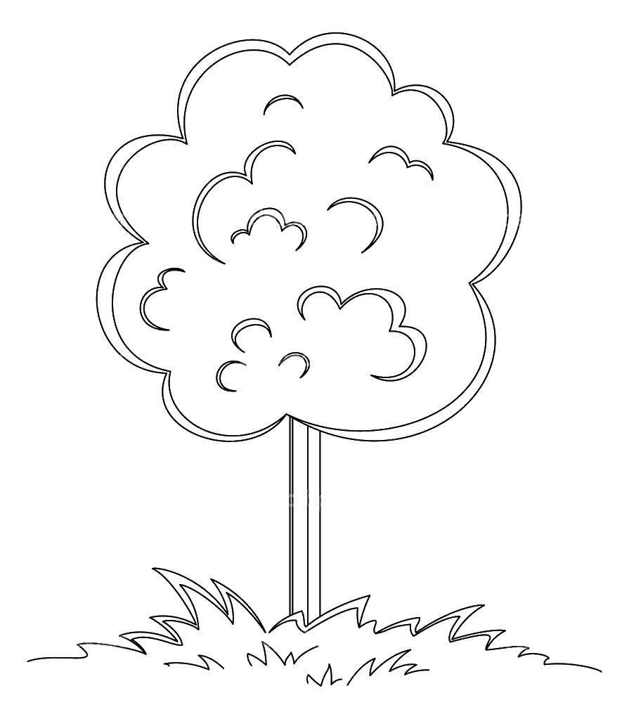 Раскраска Деревце в травке Скачать Деревья, лист.  Распечатать ,дерево,