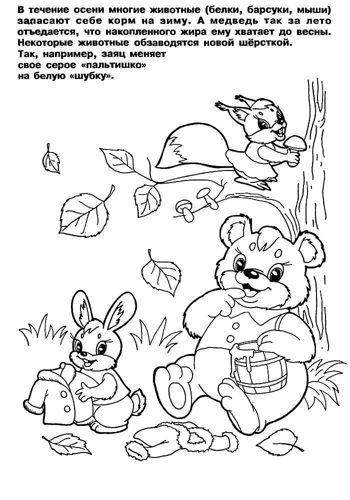 Раскраска Осень Скачать мультфильмы, кирби.  Распечатать