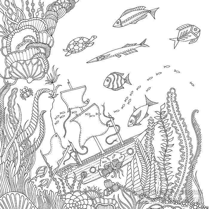 Раскраска Подводный мир Скачать узор, антистресс, подводный мир.  Распечатать ,раскраски антистресс,