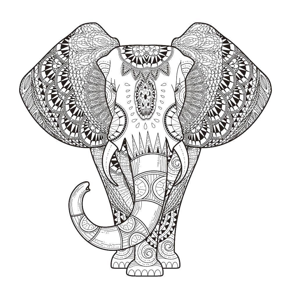 Раскраска Слон в узорах Скачать антистресс, узоры, фигуры, слон.  Распечатать ,Животные,