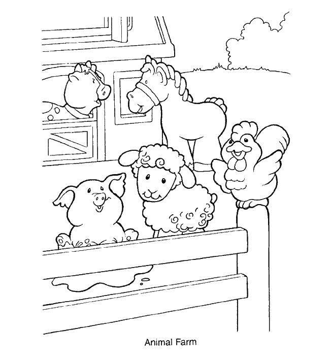 Раскраска Животные Скачать загадки.  Распечатать ,загадка,