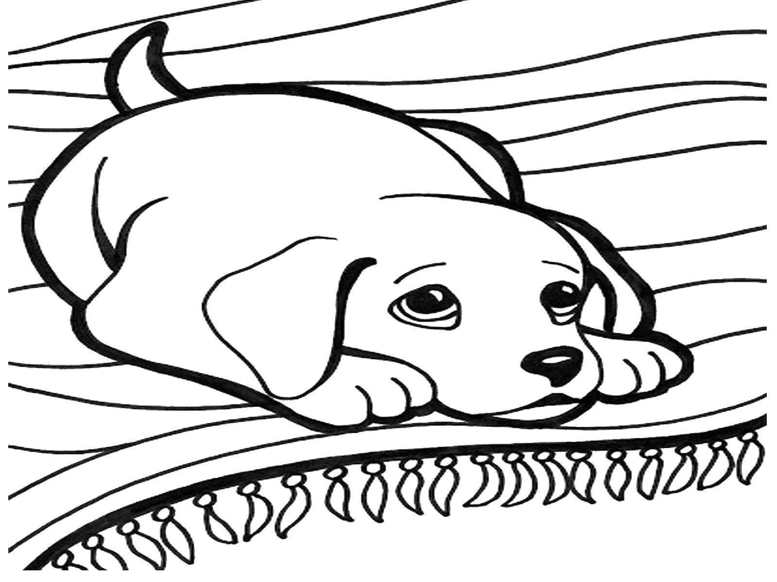 Раскраска собака Скачать Дисней, Эльза, Холодное сердце, принцесса.  Распечатать ,Диснеевские мультфильмы,