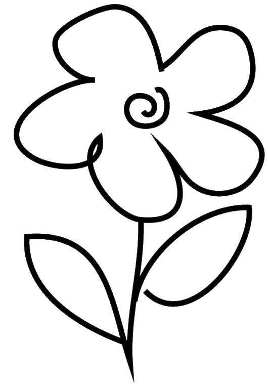 Раскраска Нарисованный цветок Скачать цветок, лепестки.  Распечатать ,Цветы,