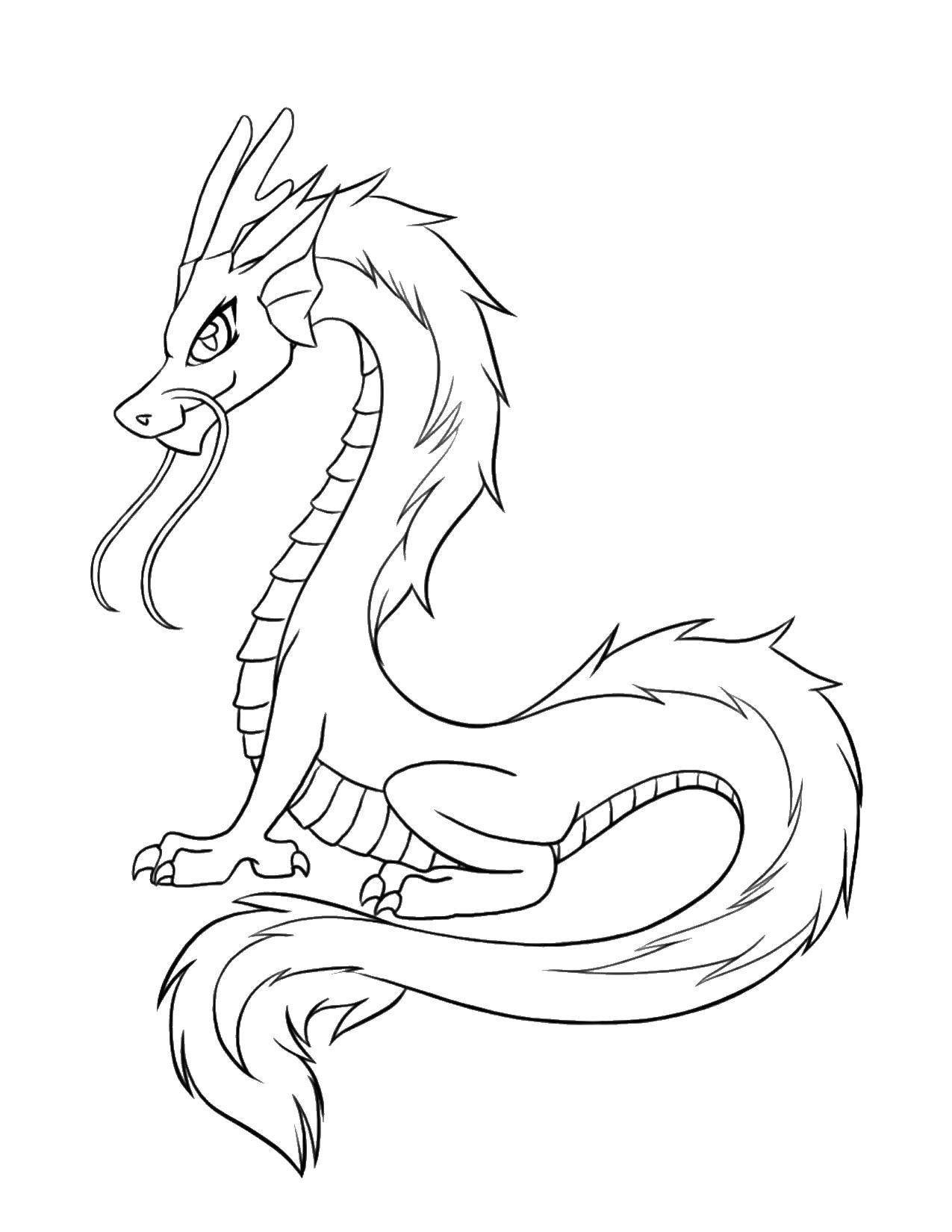 Раскраска Китайский дракон. Скачать ,Драконы,.  Распечатать