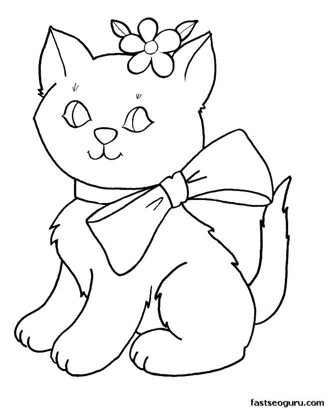 Раскраска Киса с барнтиком Скачать ,Животные, котёнок,.  Распечатать