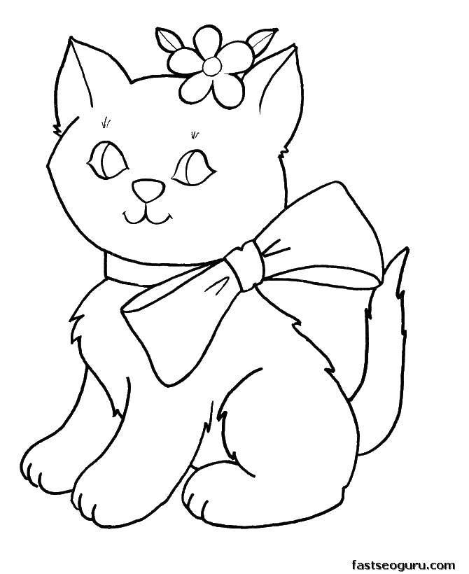 Раскраска Для девочек Скачать ,Животные, котёнок,.  Распечатать
