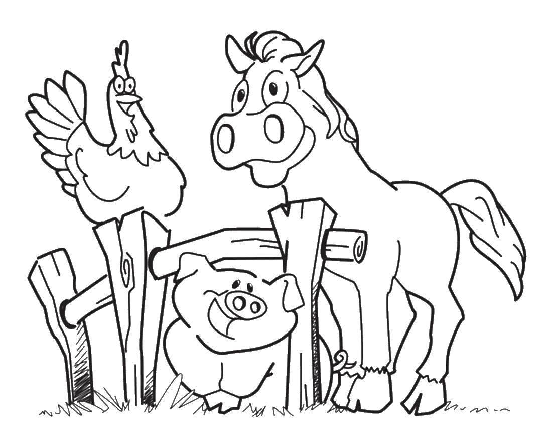 Раскраска домашние животные Скачать ,цифры, сто,.  Распечатать