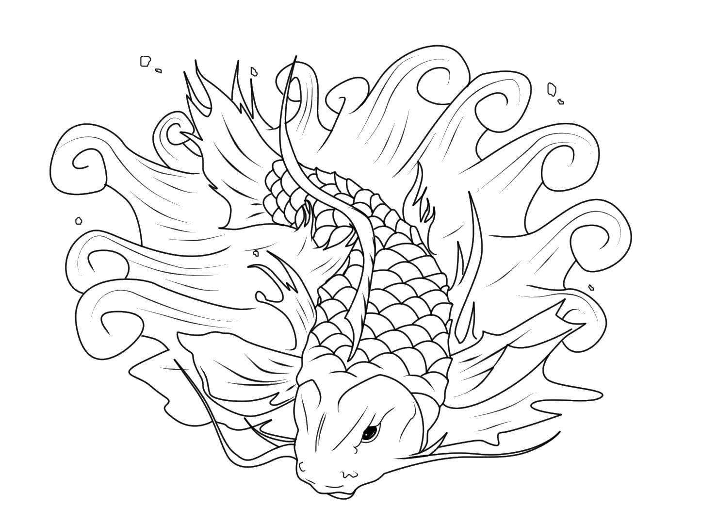 раскраски сом раскраска сом скользит по воде рыбы