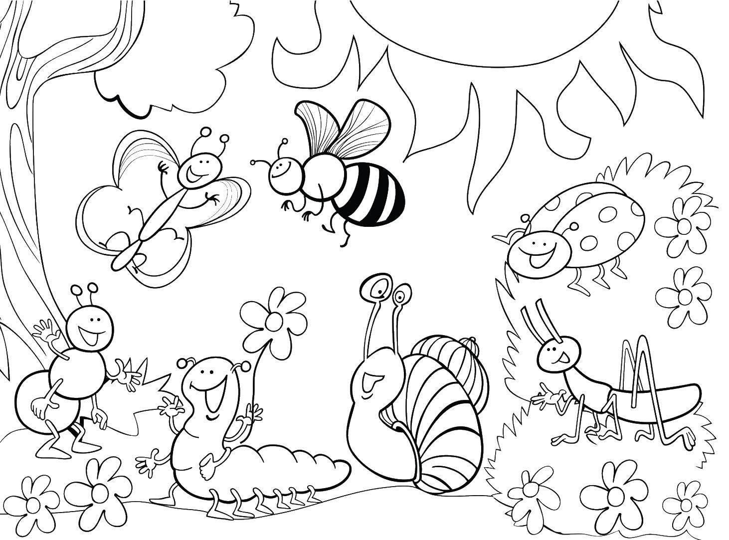 Раскраска Мир насекомых Скачать Насекомые.  Распечатать ,Насекомые,