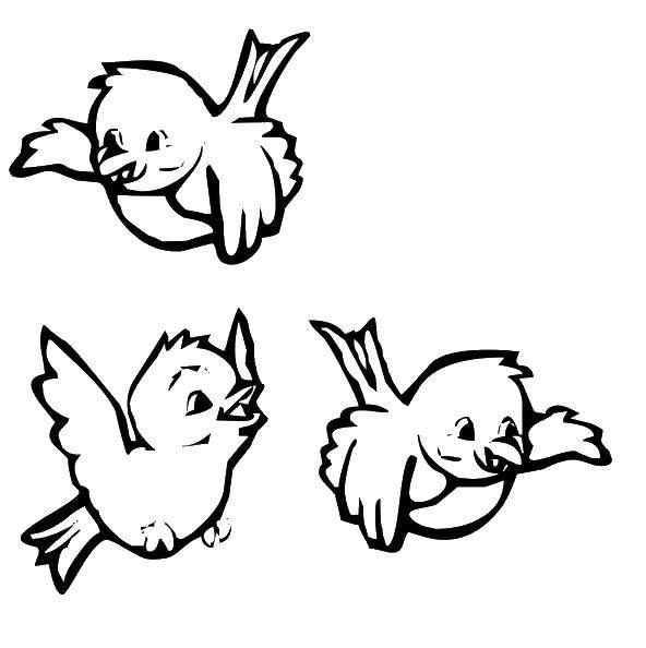 Раскраска  Скачать единорог, крылья, хвост.  Распечатать ,мой маленький пони,