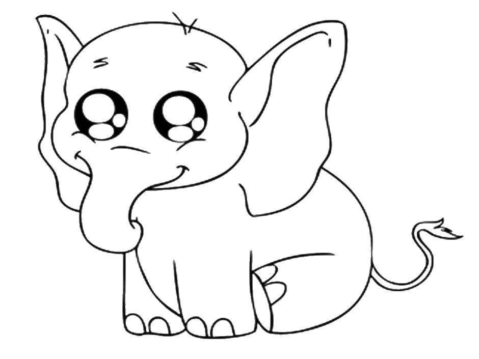 Раскраска Слоненок с милыми глазками Скачать животные, малыш слоненок.  Распечатать ,детеныши животных,