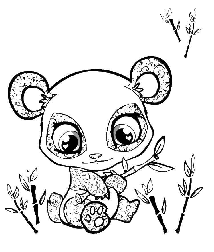 Раскраска Пандочка в узорах с бамбуком Скачать пандочка. панда, животные.  Распечатать ,детеныши животных,