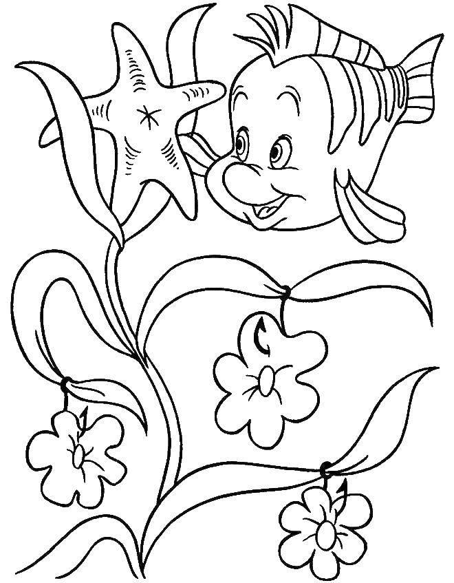 Раскраска русалочка ариэль Скачать .  Распечатать